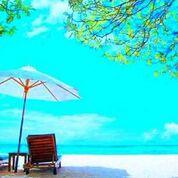 Summer%20paradise