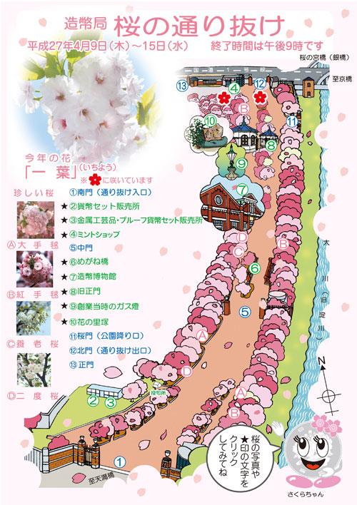 造幣局公式 桜の通り抜けイラストマップ