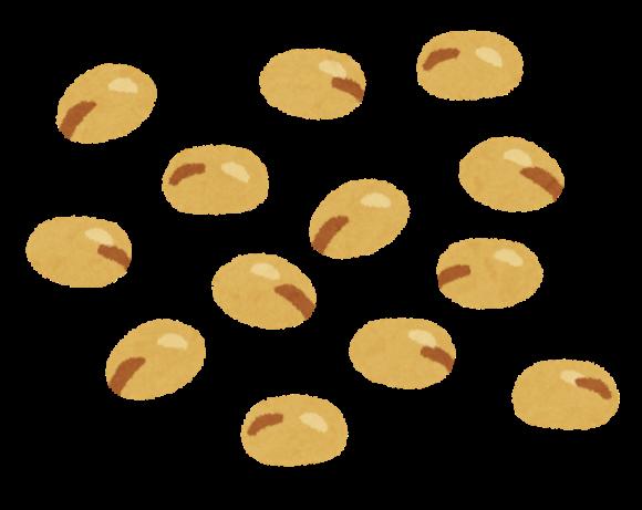 豆イラスト