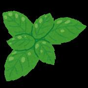 leaf_basil
